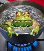 Frog_Boiling