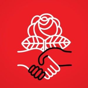 Red Themed DSA Logo
