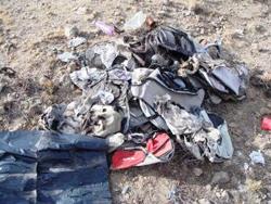 Arizona Border Trash impact